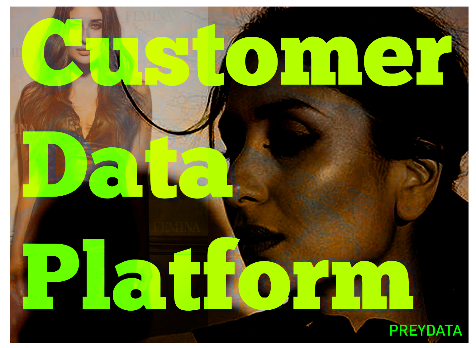 10 Questions to Ask Your Customer Data Platform Vendor – REDPOINT